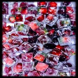 Fruit & Herbs Embeded Ice
